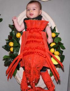 martha_lobster400x520